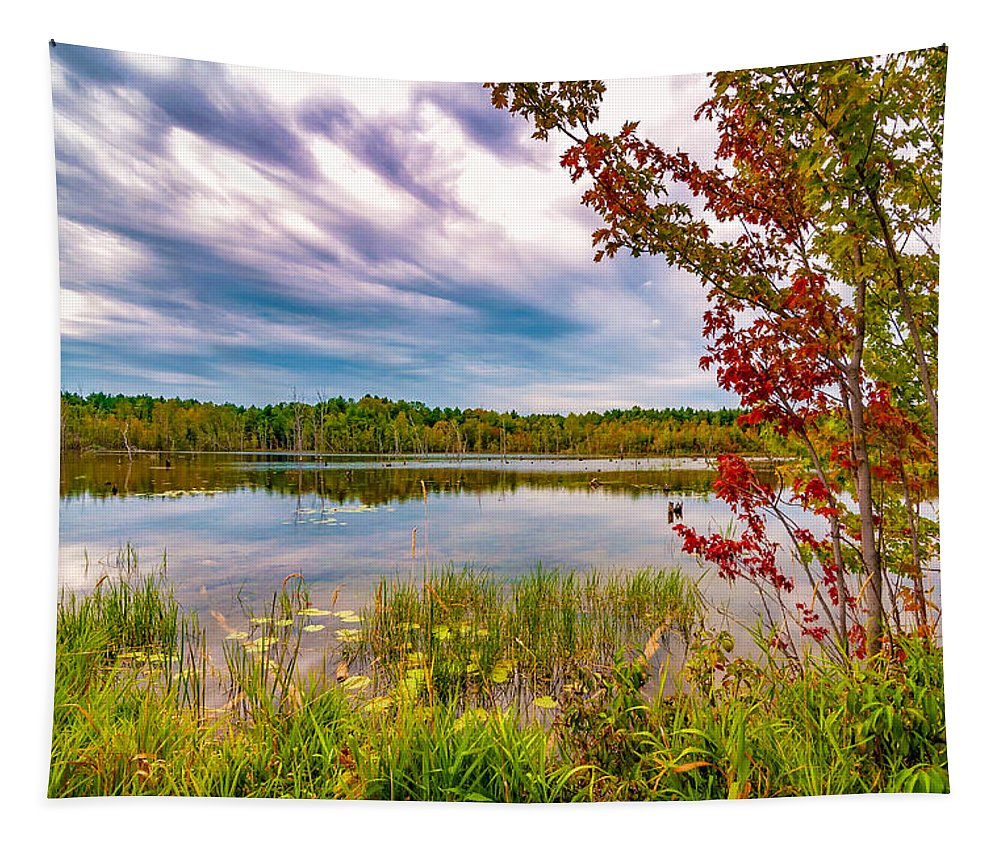 Landscape Tapestry featuring the photograph A Hint Of Autumn by Steve Harrington