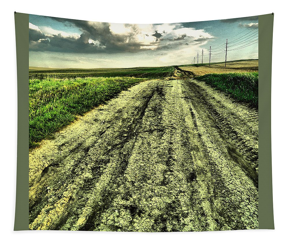 Road Tapestry featuring the photograph A Long Gravel Road by Jeff Swan