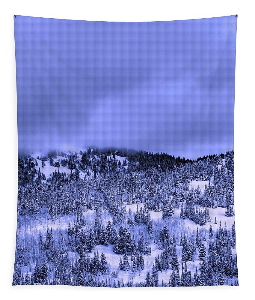 Utah Tapestry featuring the photograph A Utah Winter by Dakota Corbin