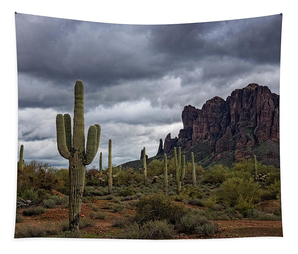 Superstition Mountains Tapestry featuring the photograph At The Base Of The Mountain by Saija Lehtonen