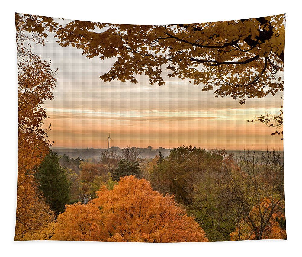 Carleton College* Northfield Tapestry featuring the photograph Autumn On The Hill by Joe Miller