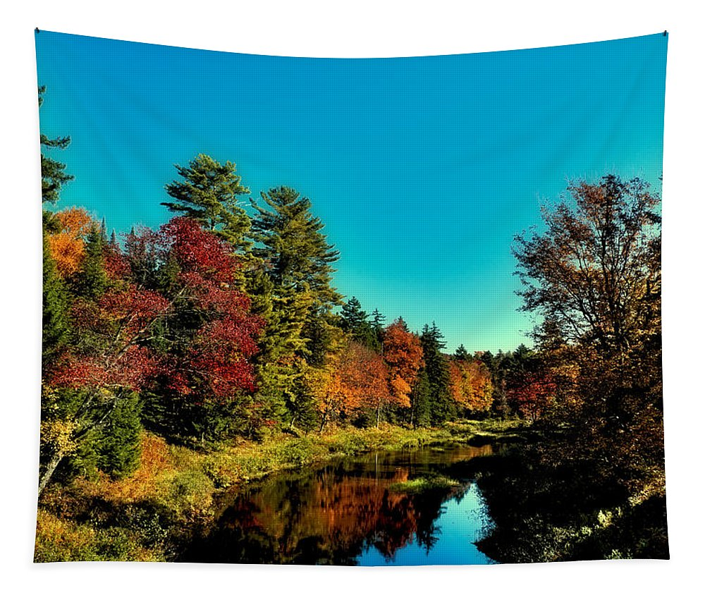 Autumn Splendor On The Moose River Tapestry featuring the photograph Autumn Splendor On The Moose River by David Patterson