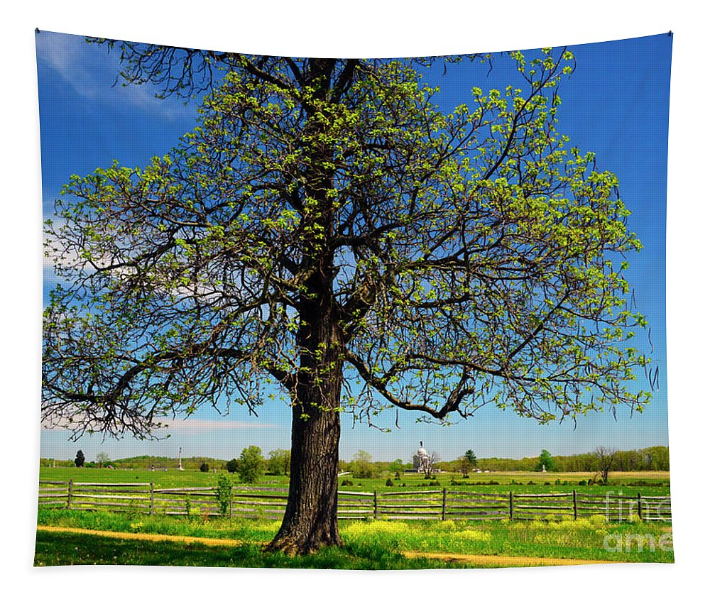 Civil War Tapestry featuring the photograph Battlefield Landscape by Paul W Faust - Impressions of Light