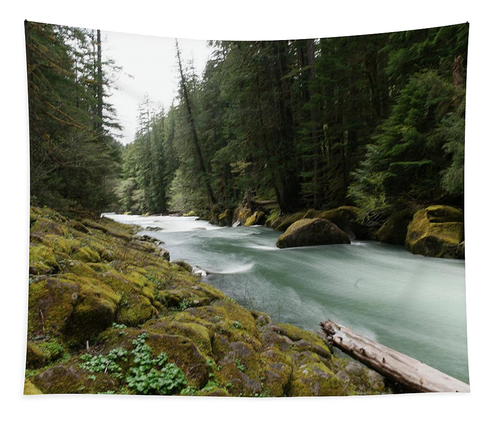 Rivers Tapestry featuring the photograph Beautiful White Water by Jeff Swan