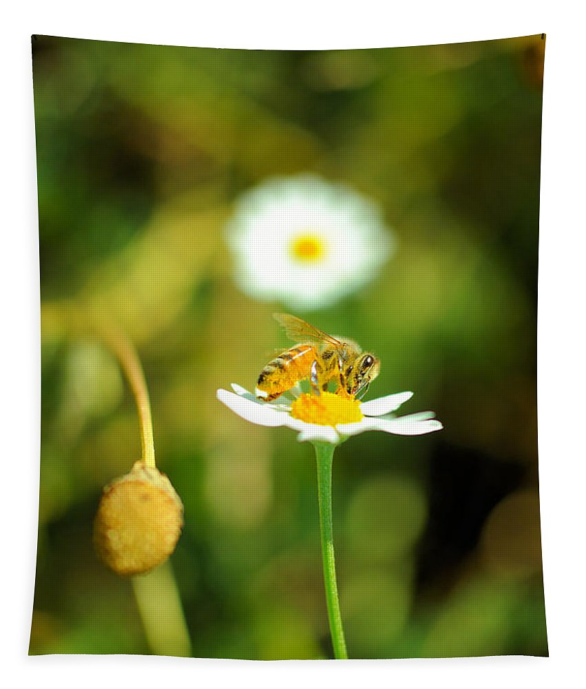 Honeybee Tapestry featuring the photograph Bee On A Flower by Jeff Swan