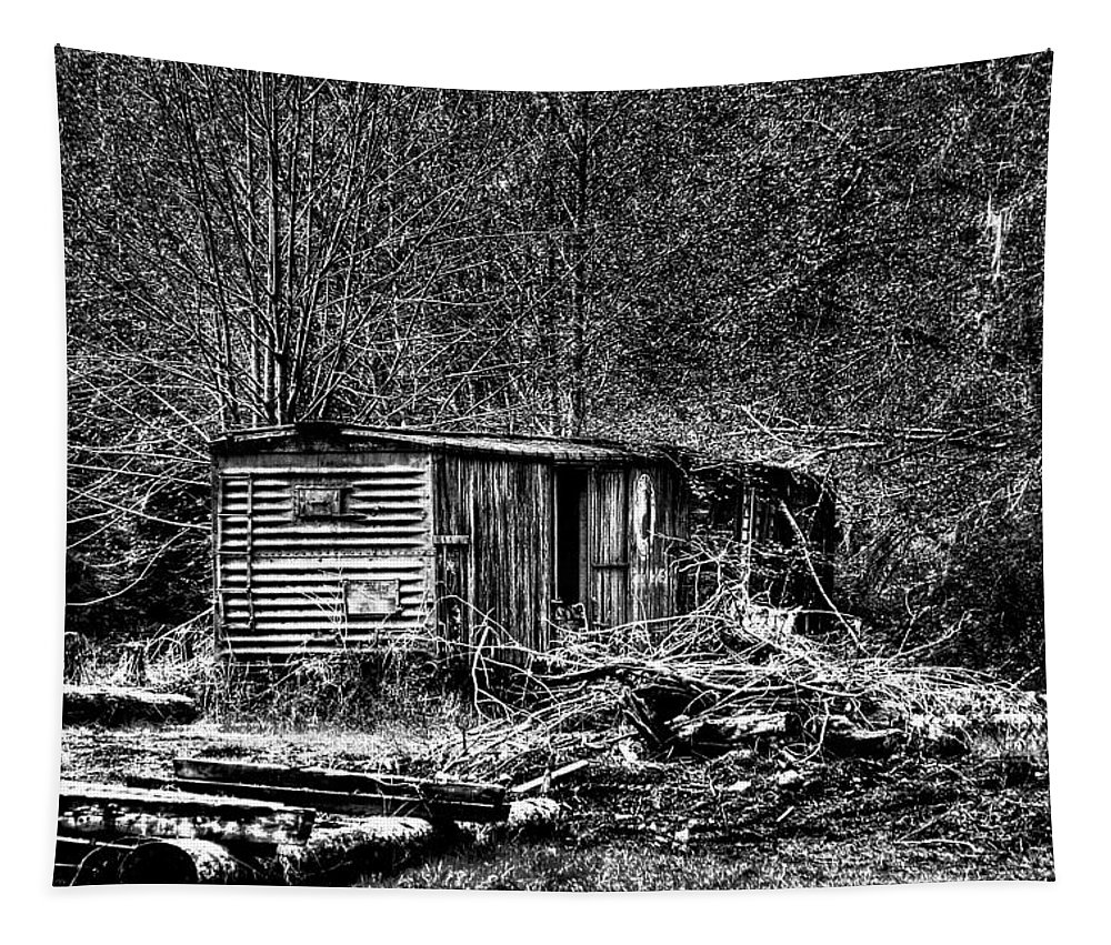Camp 18 Tapestry featuring the photograph Box Car by David Patterson