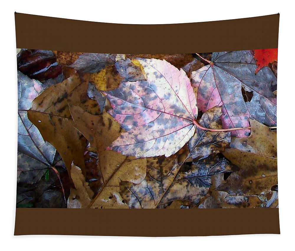 Fall Color Leaf Tapestry featuring the photograph Colors Of The Fall by Wolfgang Schweizer