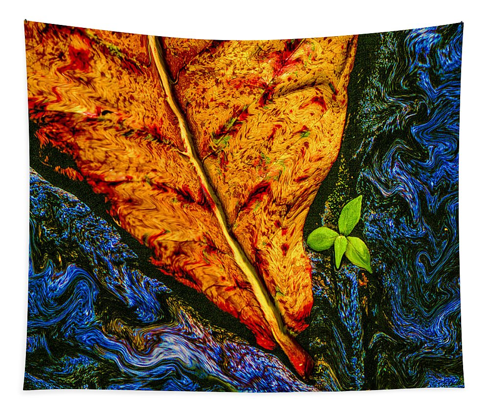 Cycle Of Life Tapestry featuring the photograph Cycle Of Life by Paul Wear