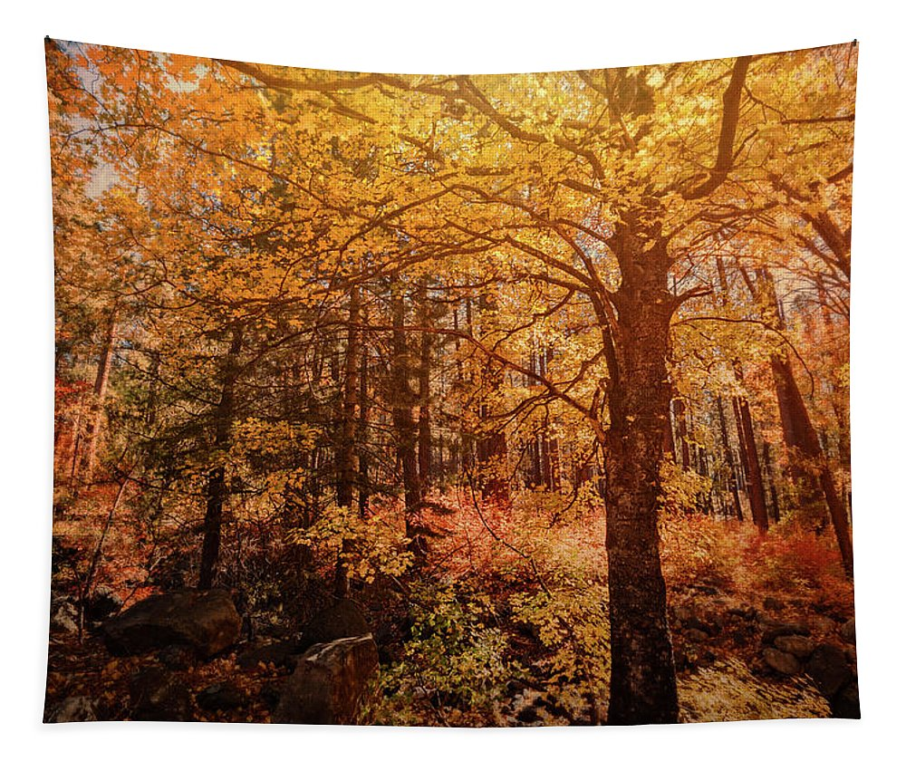 Fall Colors Tapestry featuring the photograph Fall Colors by Saija Lehtonen