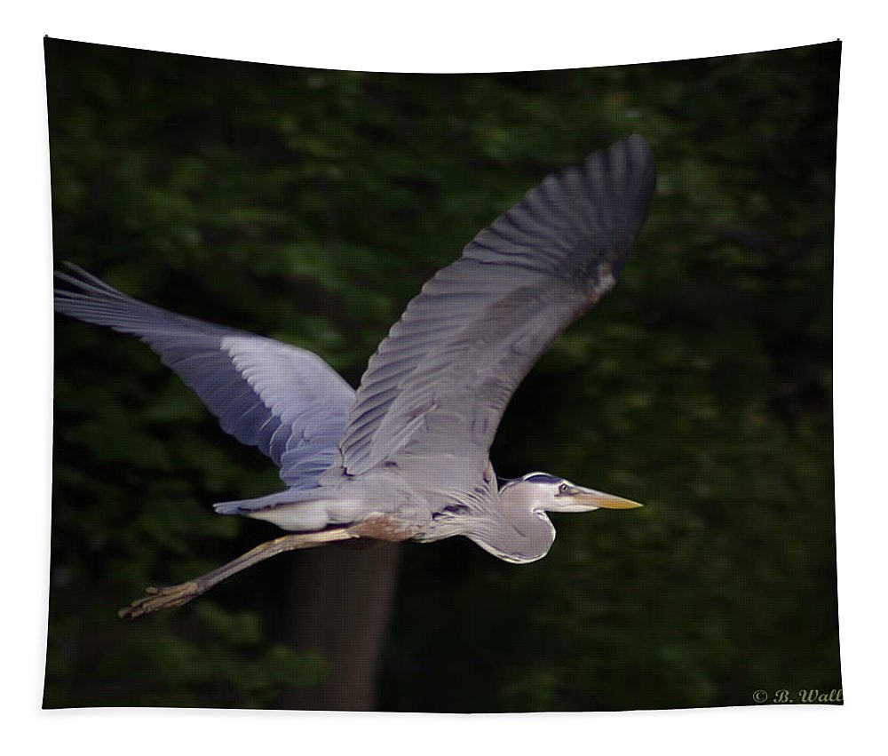 2d Tapestry featuring the photograph Great Blue Heron In Flight by Brian Wallace