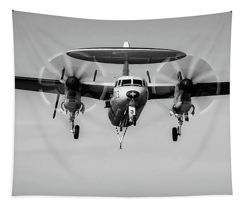 Plane Tapestry featuring the photograph Hawkeye by Mountain Dreams