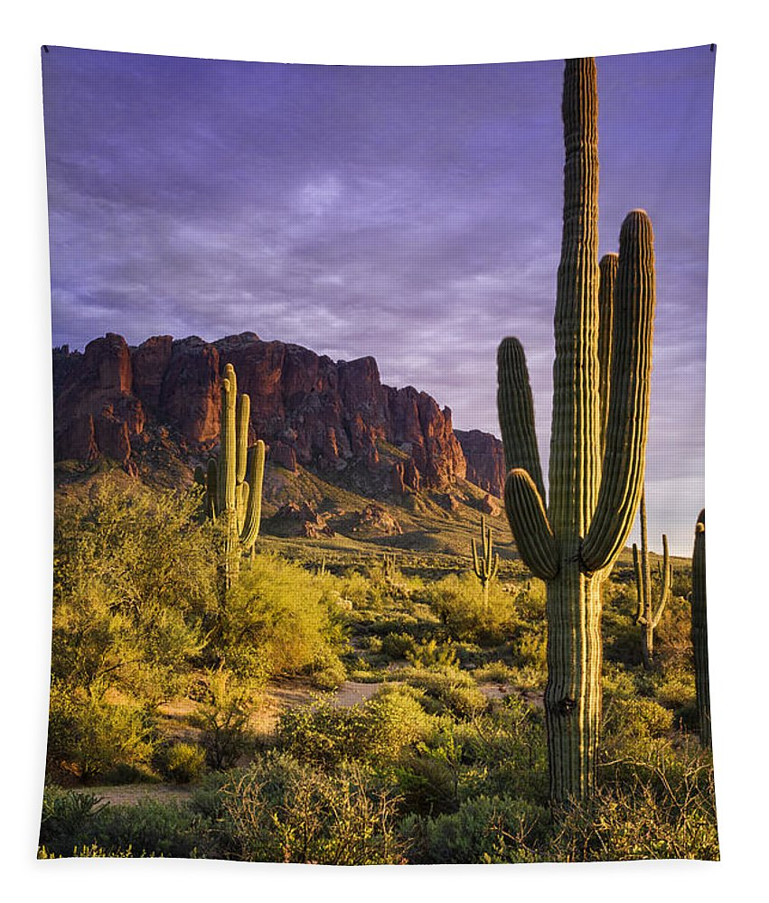 Sunset Tapestry featuring the photograph In The Desert Golden Hour by Saija Lehtonen