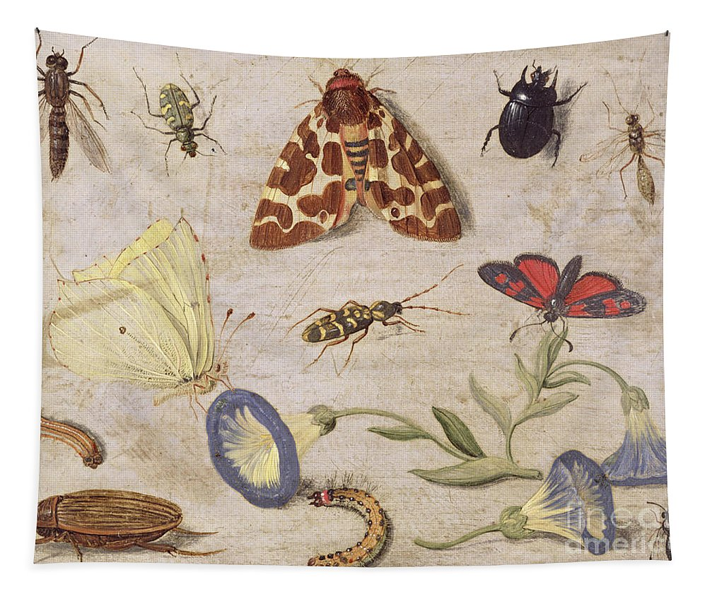 Butterflies Tapestry featuring the painting Insects by Jan Van Kessel