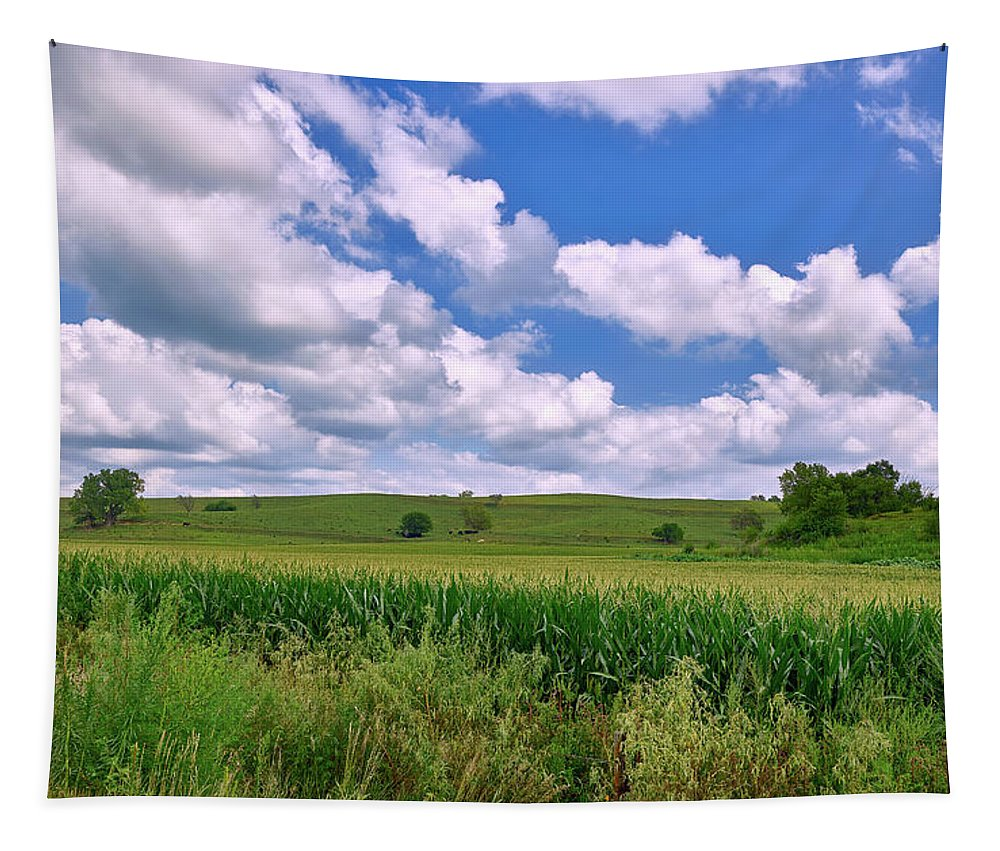 Iowa Tapestry featuring the photograph Iowa Cornfield by Mountain Dreams