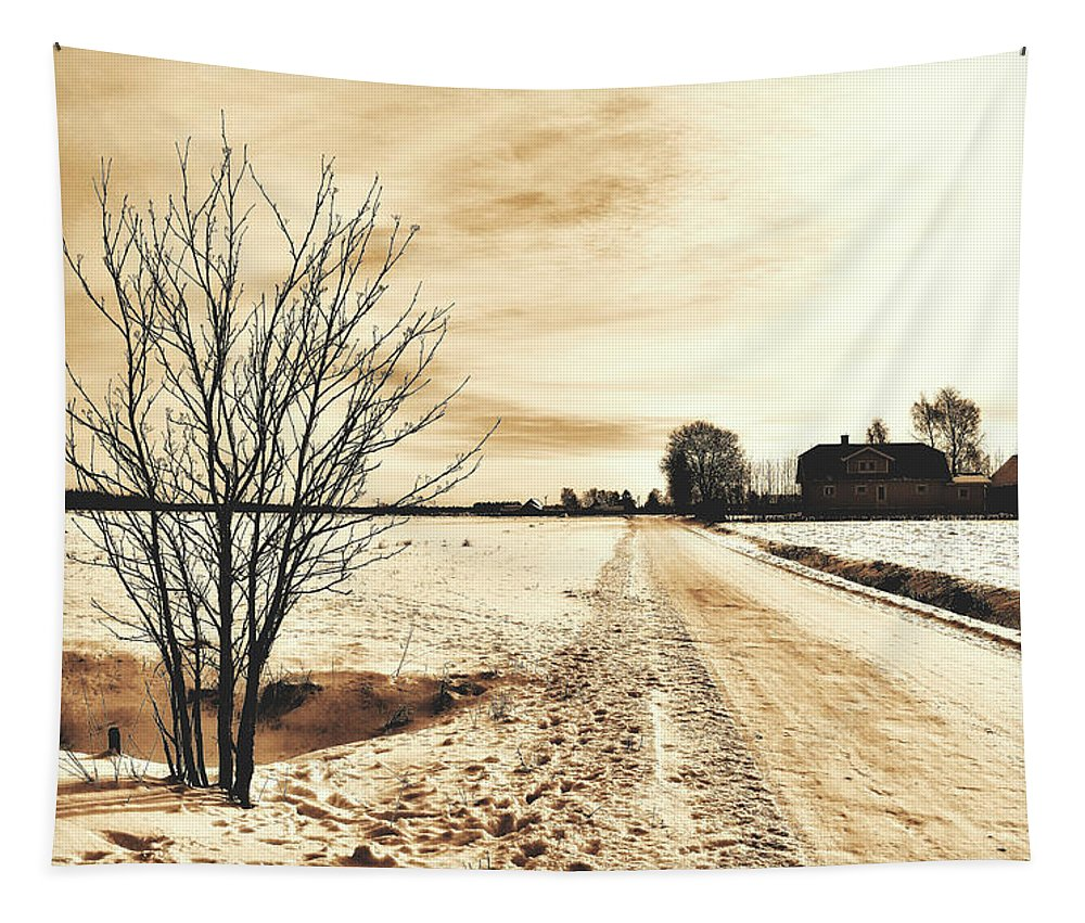 Sweden Tapestry featuring the photograph January by Pixabay