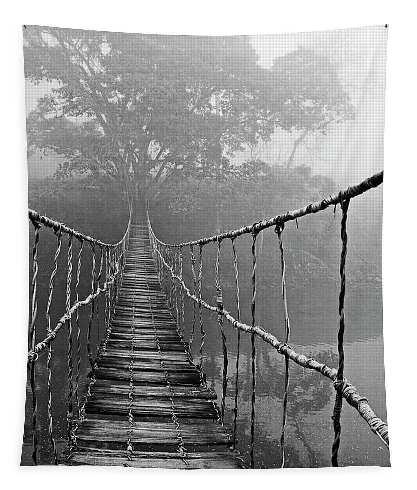 Absence Tapestry featuring the photograph Jungle Journey Black and White by Skip Nall