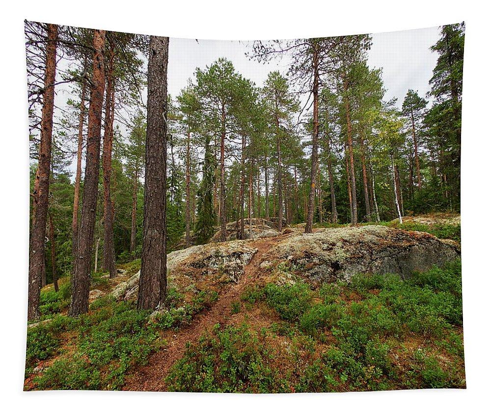 Finland Tapestry featuring the photograph Kaukaloistenkallio Hillside View by Jouko Lehto