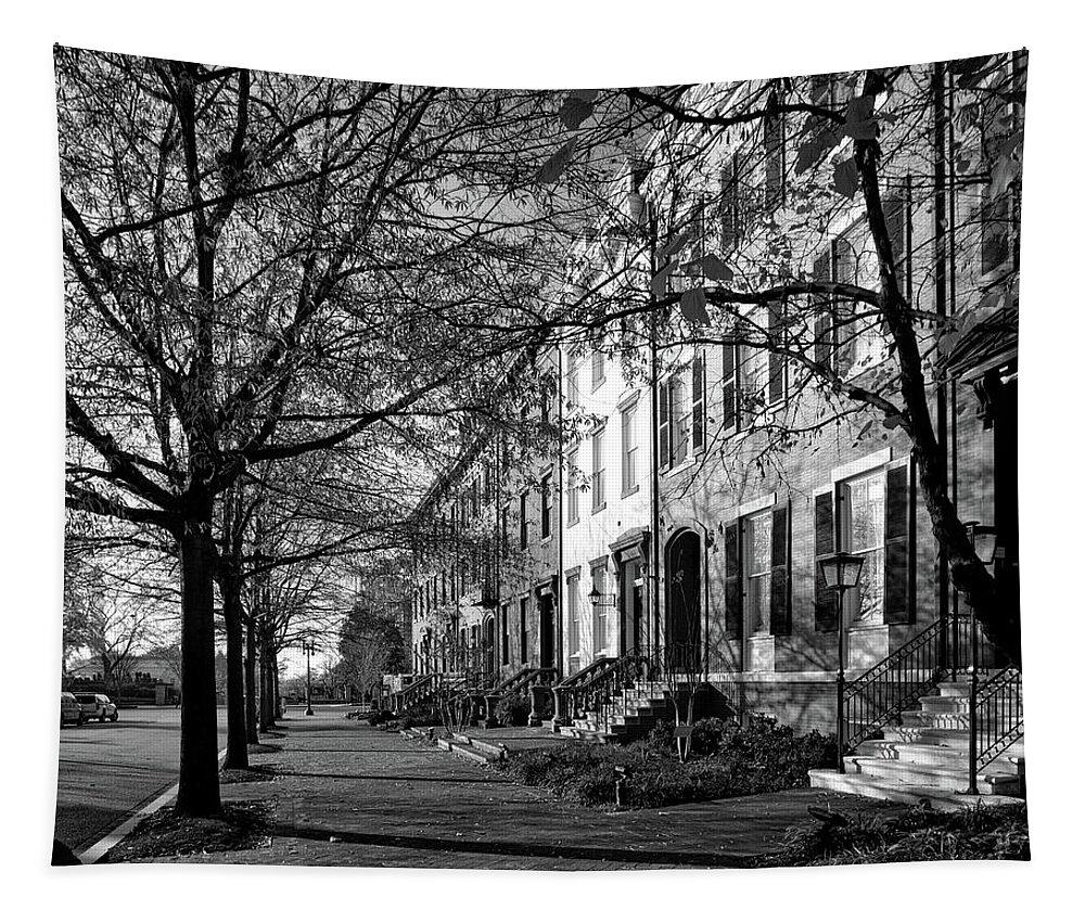 Washington D.c Tapestry featuring the photograph La Fayette Park - Washington D C by Mountain Dreams