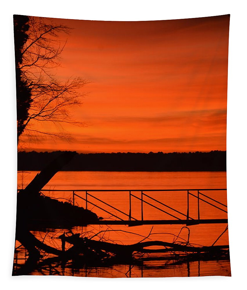 Orange You Glad I Took This Shot Tapestry featuring the photograph Orange You Glad I Took This Shot by Lisa Wooten