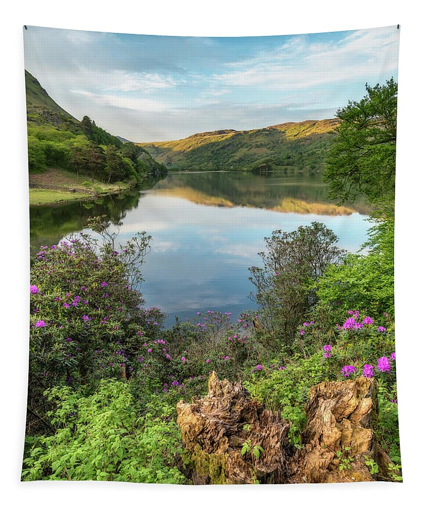 Lake Tapestry featuring the photograph Lakeside by Adrian Evans