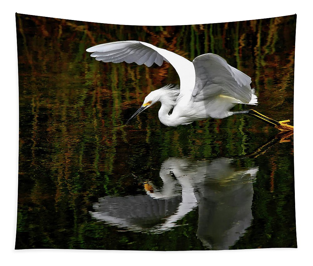 Bird Tapestry featuring the photograph Liftoff by Pedro Lastra