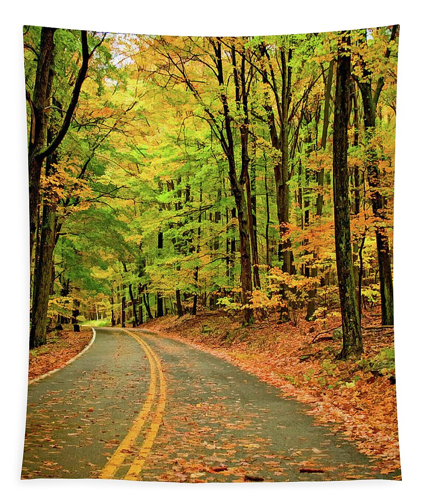 Landscape Tapestry featuring the photograph Lost In Pennsylvania - Paint by Steve Harrington