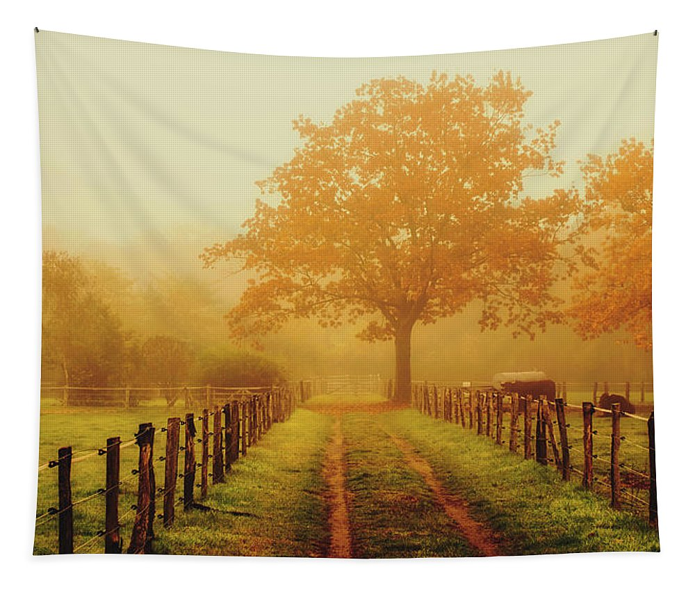 Autumn Tapestry featuring the photograph Misty Autumn Morning by Pixabay