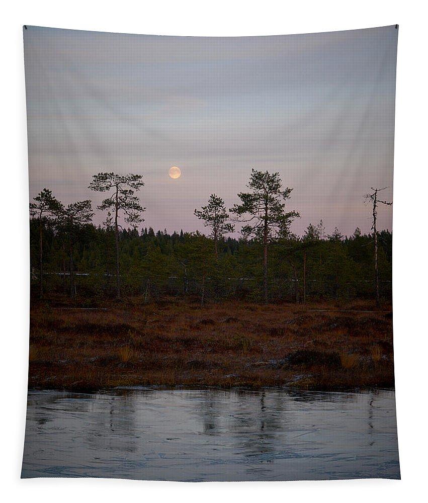 Lehtokukka Tapestry featuring the photograph Moon Over Wetlands by Jouko Lehto