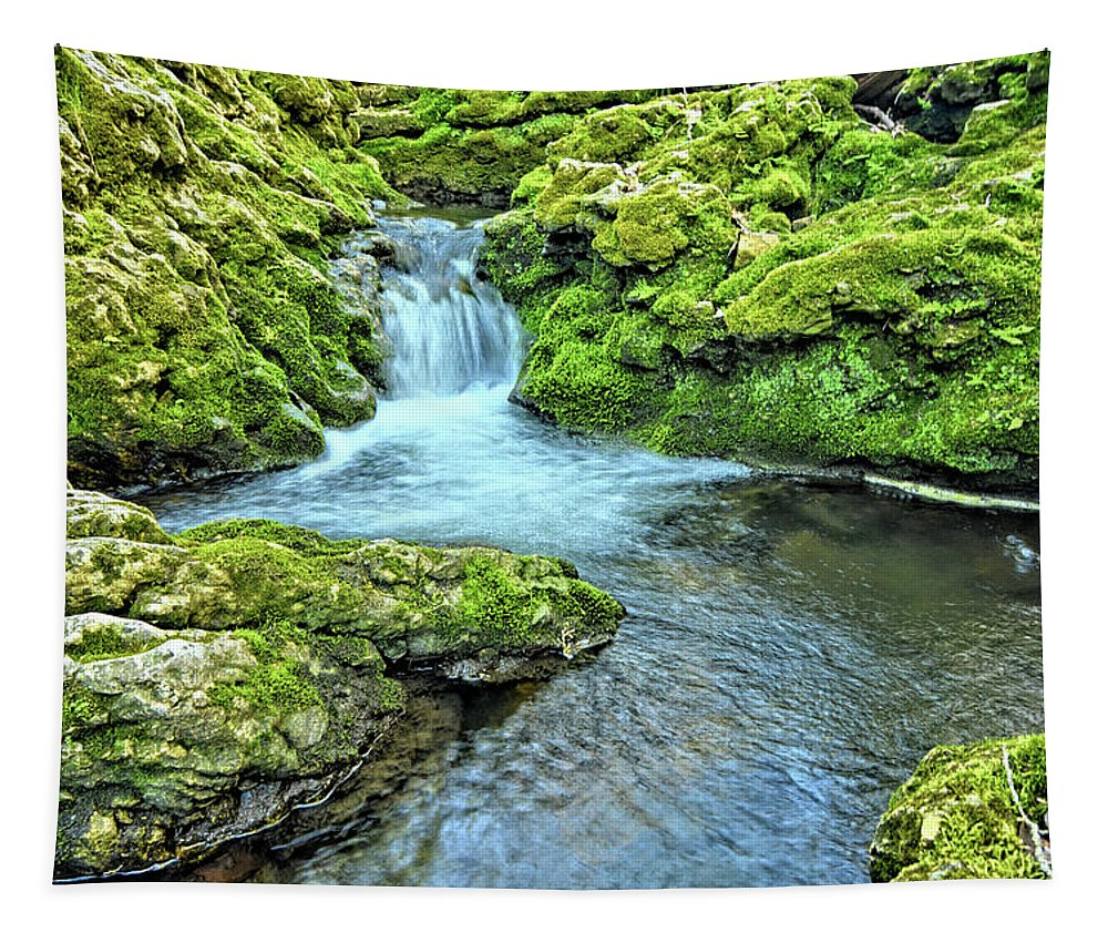 Mossy Tapestry featuring the photograph Mossy Moine Falls by Bonfire Photography
