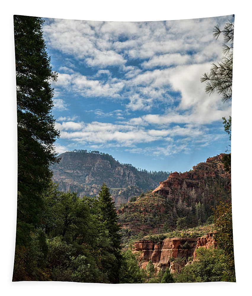 Road Tapestry featuring the photograph On The Road To Red Rocks by Saija Lehtonen