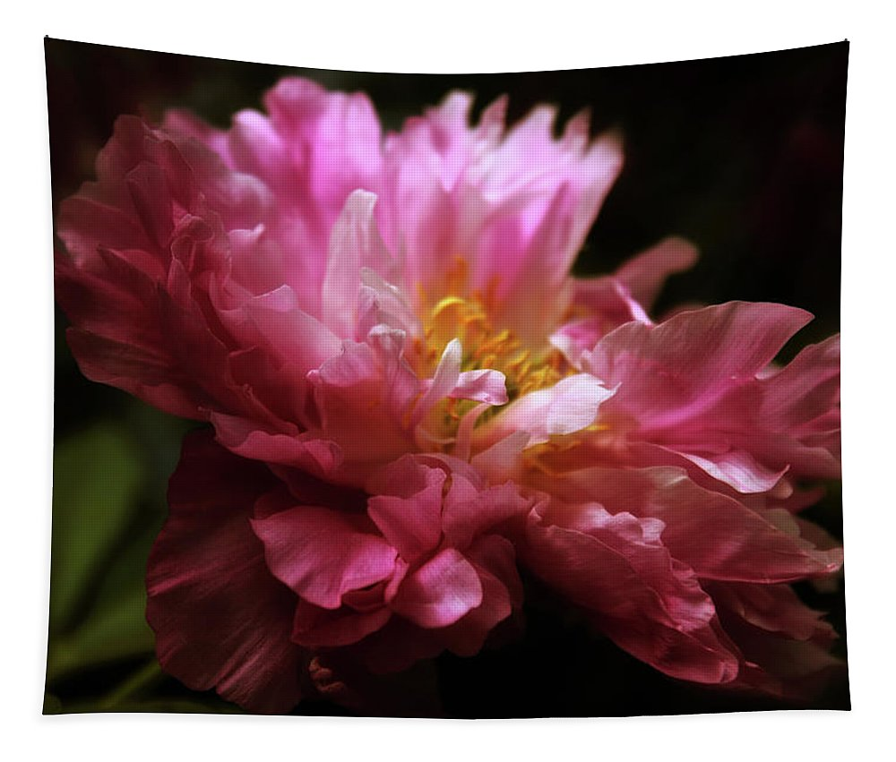 Peony Tapestry featuring the photograph Peony Pride by Jessica Jenney