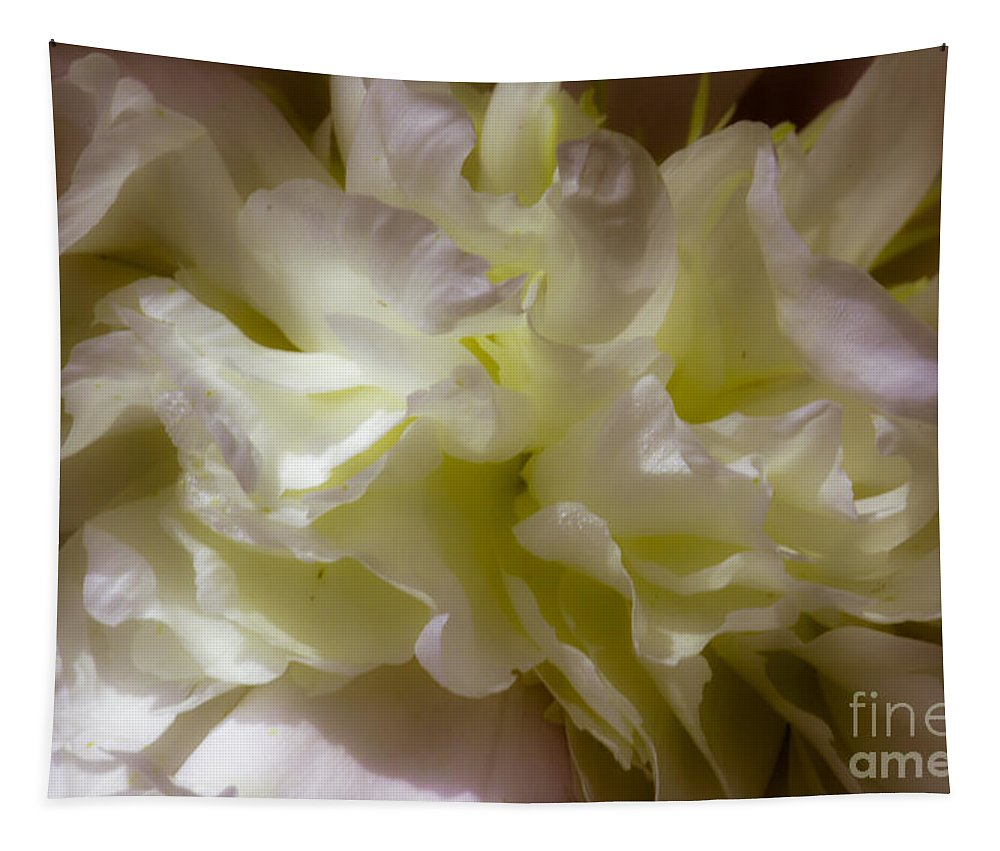 Peony Tapestry featuring the photograph Peony by Sherman Perry