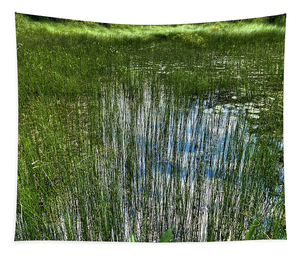 Pond Grasses Tapestry featuring the photograph Pond Grasses by David Patterson