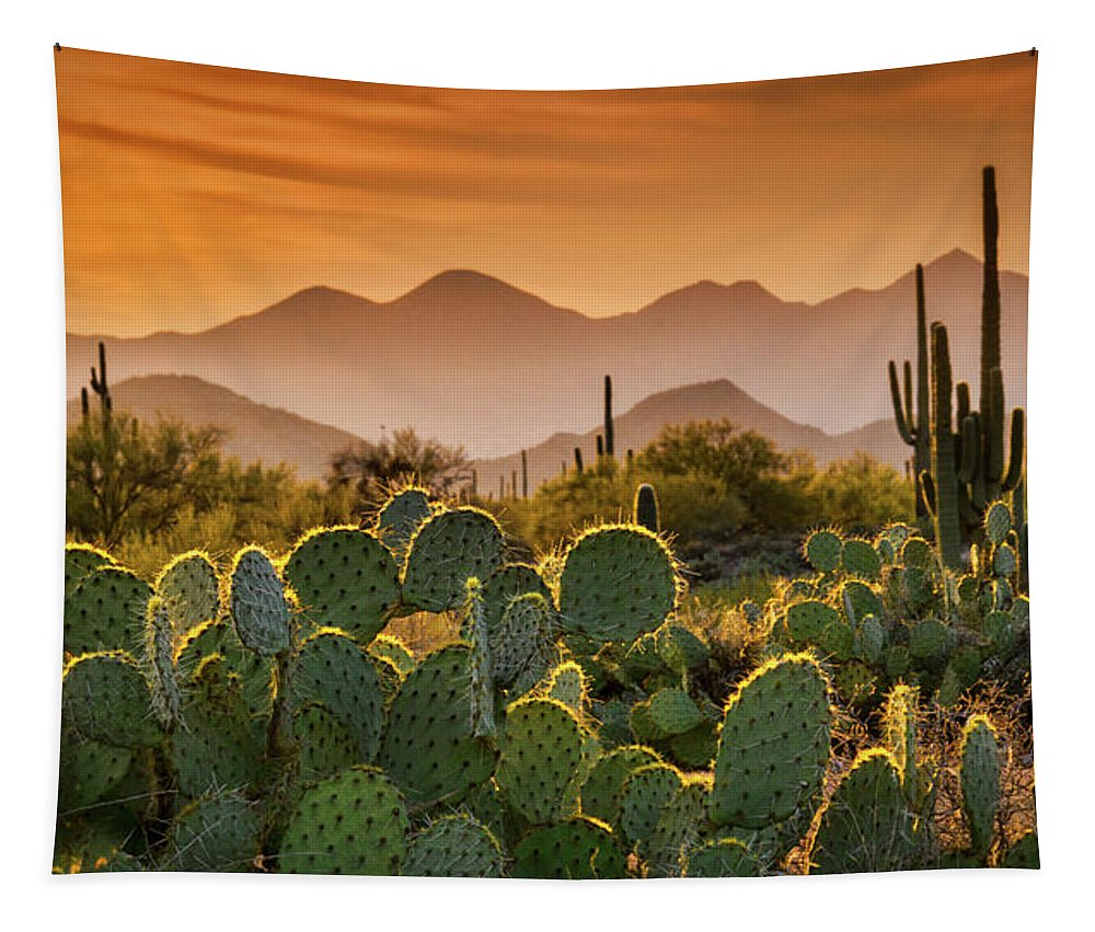 Sunset Tapestry featuring the photograph Pure Sonoran Gold by Saija Lehtonen