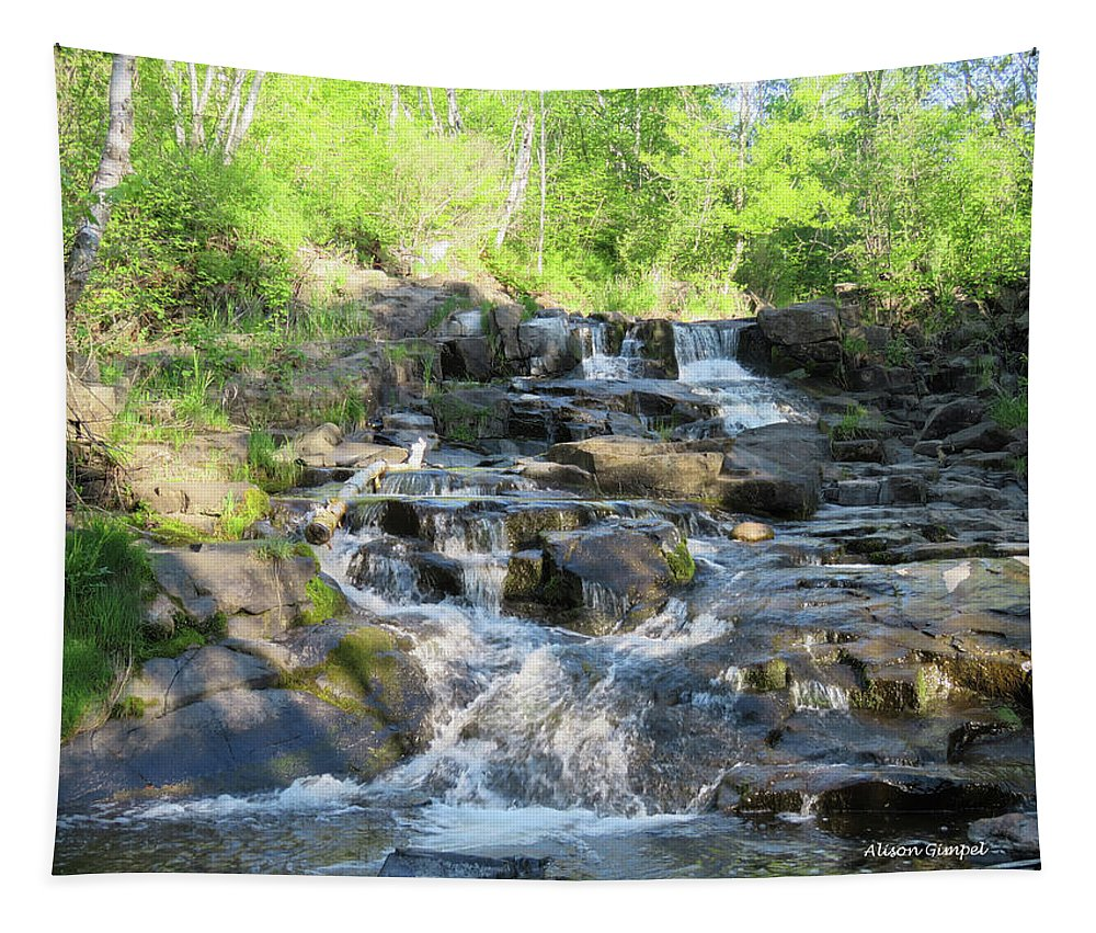 Waterfalls Tapestry featuring the photograph Quiet Time by Alison Gimpel