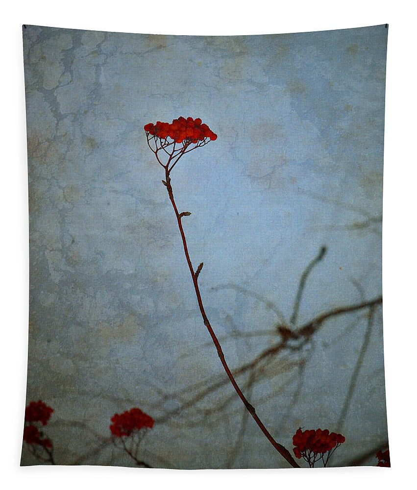 Blue Tapestry featuring the photograph Red Berries Blue Sky by Tara Turner