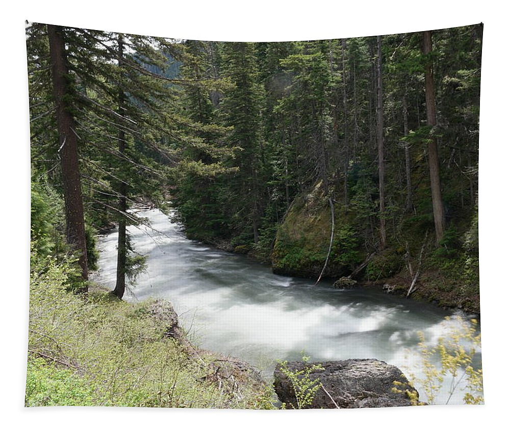Rivers Tapestry featuring the photograph Running Through The Forest by Jeff Swan