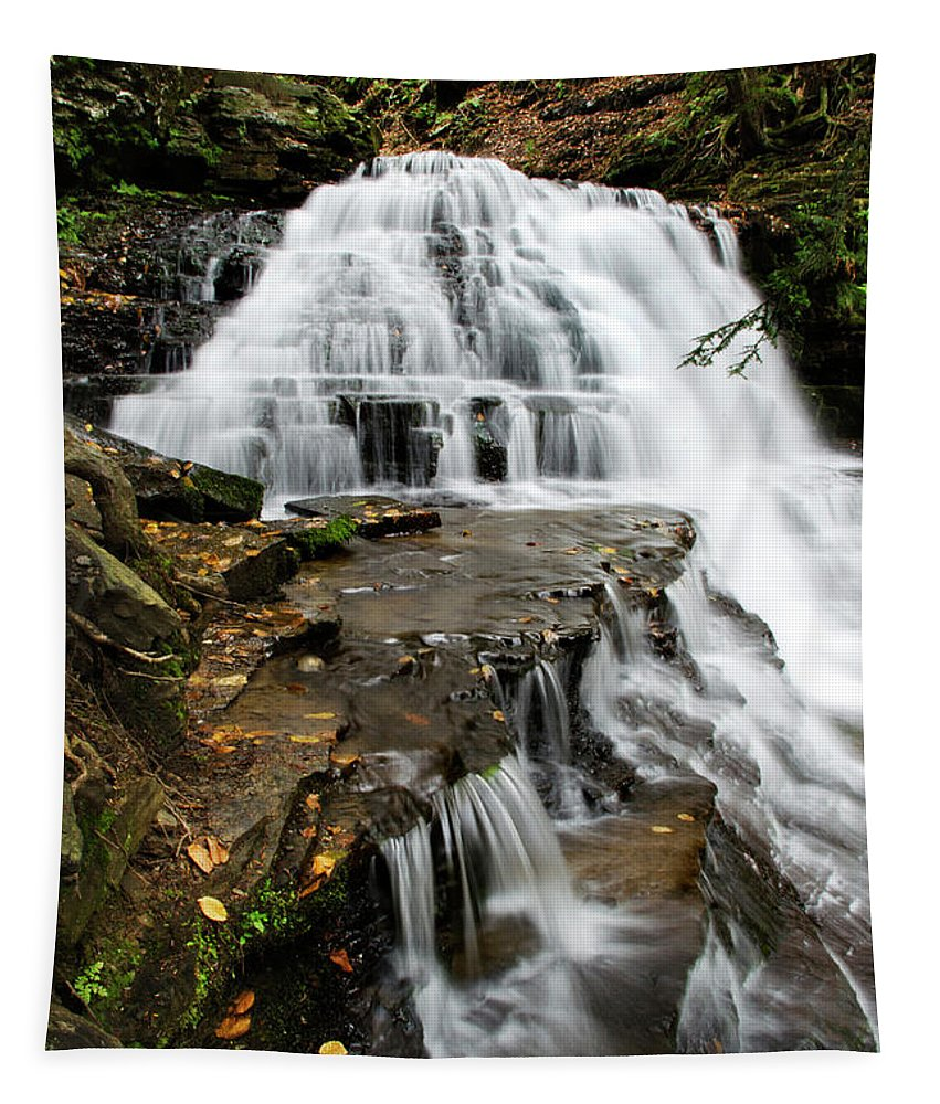 Pennsylvania Tapestry featuring the photograph Salt Springs Waterfall by Christina Rollo