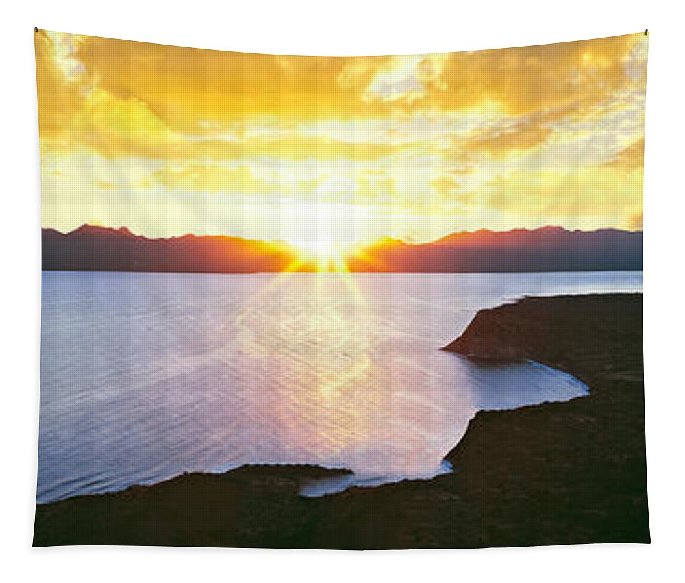 Photography Tapestry featuring the photograph Silhouette Of Lone Cardon Cactus Plant by Panoramic Images