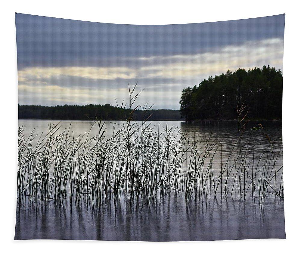 Jouko Lehto Tapestry featuring the photograph Thin Rain In The Evening by Jouko Lehto
