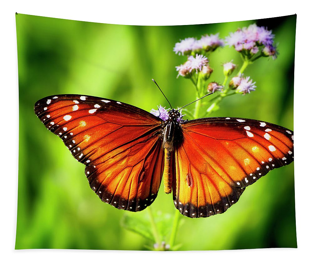 Butterfly Tapestry featuring the photograph Soldier Butterfly by Mark Andrew Thomas