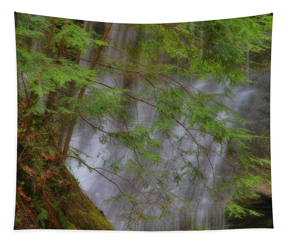 Spring Waterfall Tapestry featuring the photograph Spring Waterfall by Dan Sproul