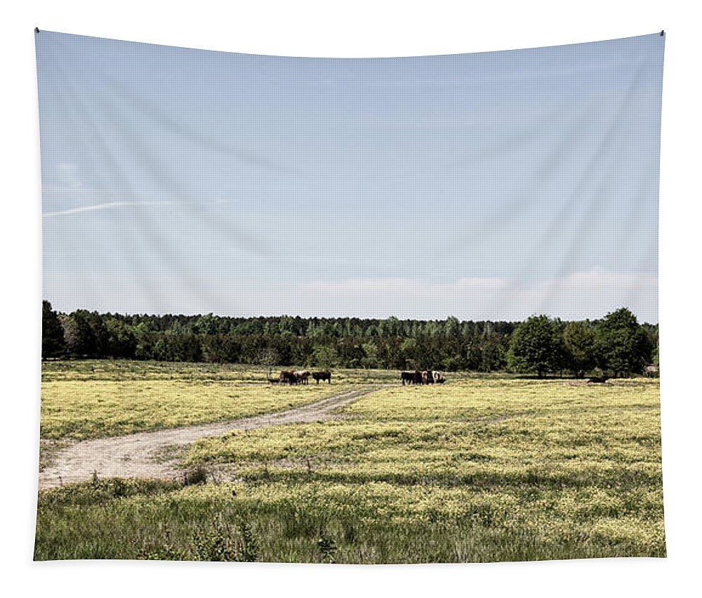 Spring Tapestry featuring the photograph Springtime In Alabama by Mountain Dreams