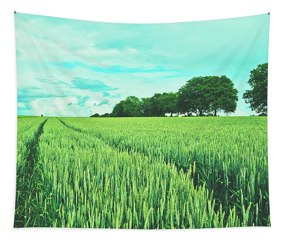 Field Tapestry featuring the photograph Summer Grains by Pixabay
