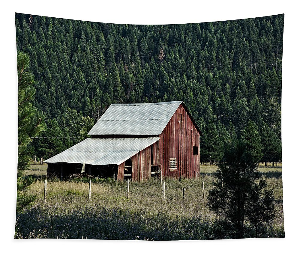 Barn Tapestry featuring the photograph Surrounded By Forest by Mountain Dreams