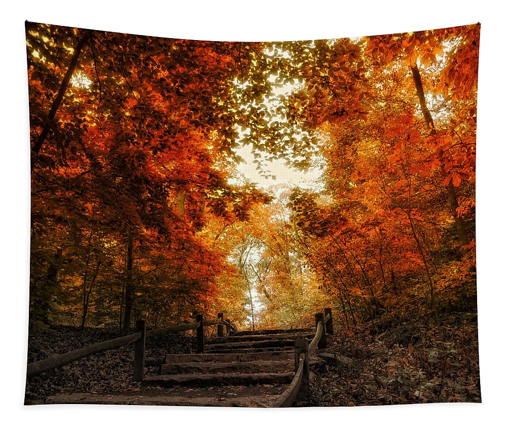 Autumn Tapestry featuring the photograph The Approach by Jessica Jenney