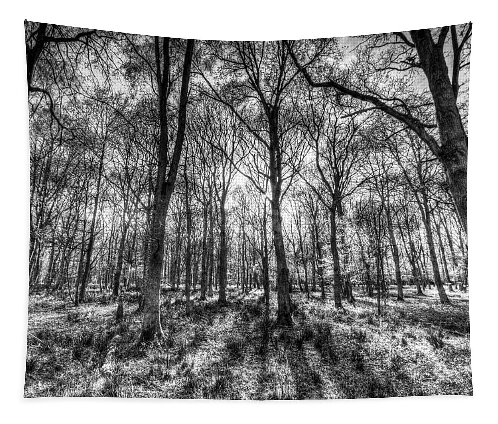 Forest Tapestry featuring the photograph The Monochrome Forest by David Pyatt