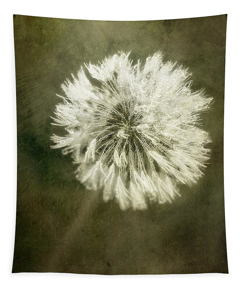Dandelion Flower Tapestry featuring the photograph Water Drops On Dandelion Flower by Scott Norris