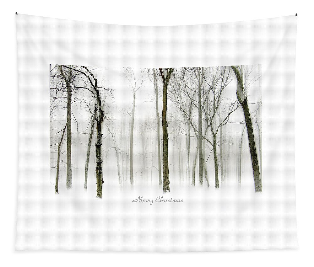 Christmas Card Tapestry featuring the photograph White Christmas by Jessica Jenney