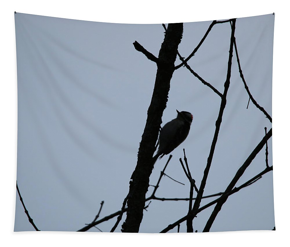Woodpecker Tapestry featuring the photograph Woodpecker by Michael Munster